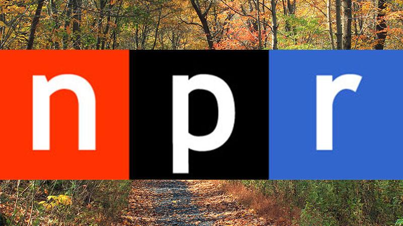 NPR Spoonman